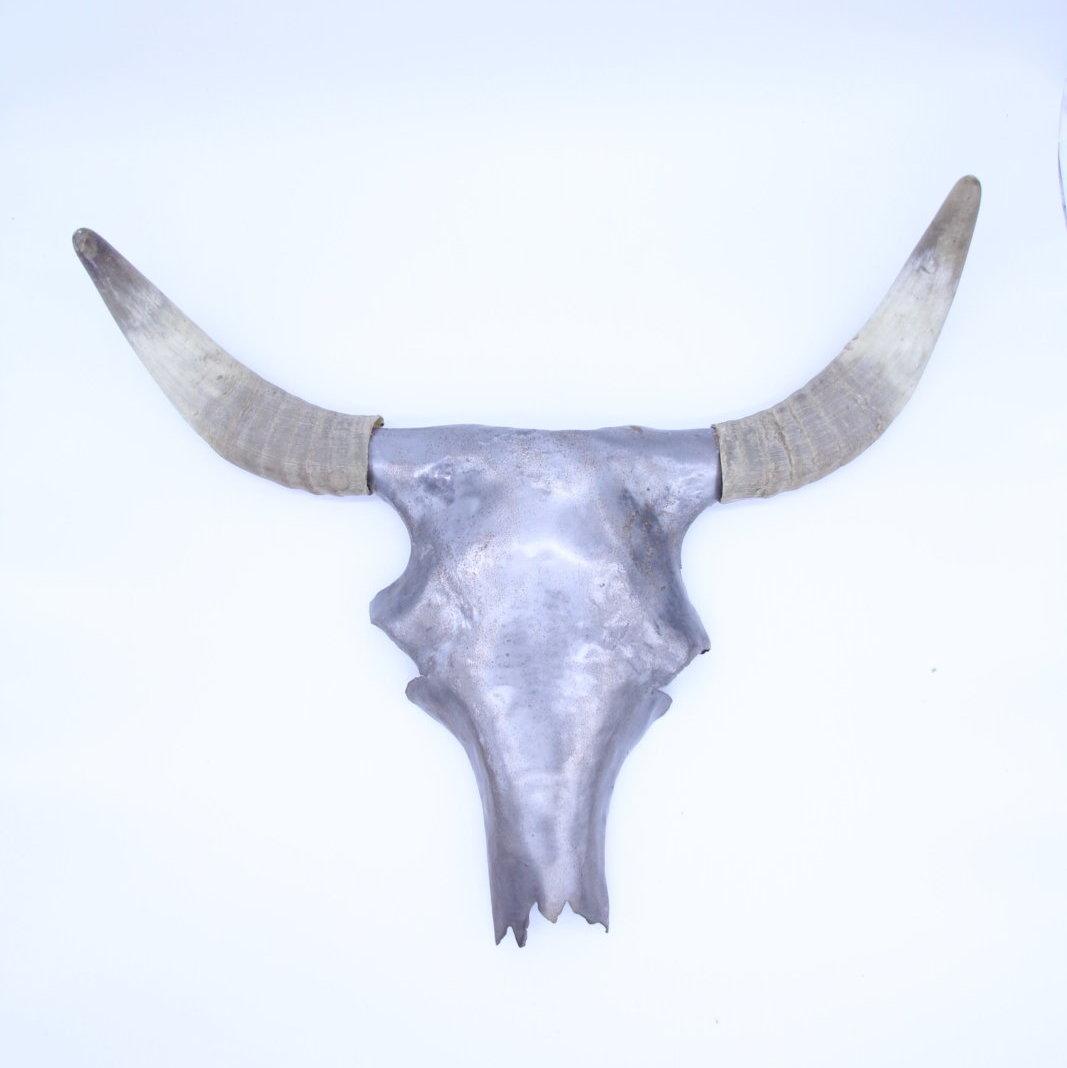 """Stiertrophäe """"The Bull"""""""